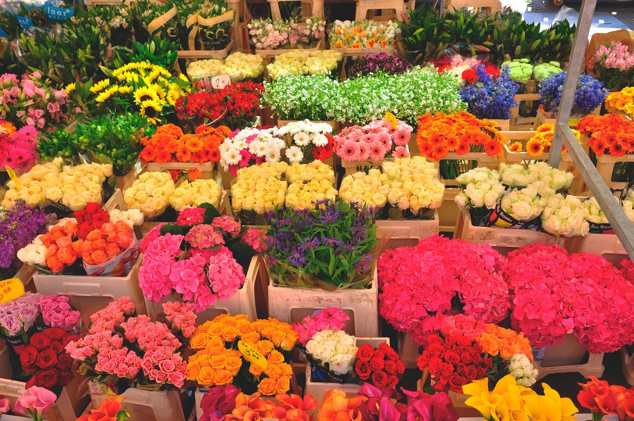 Мыла, самая большая оптовая база цветов в москве
